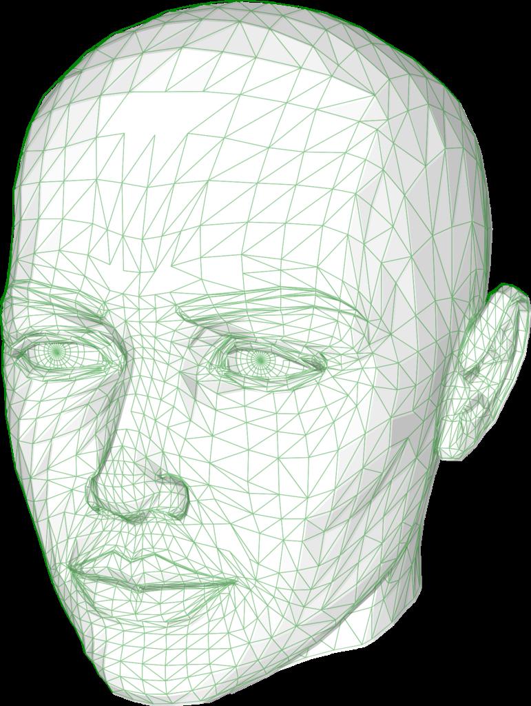 Das Object-Mesh am Beispiel eines Kopfes